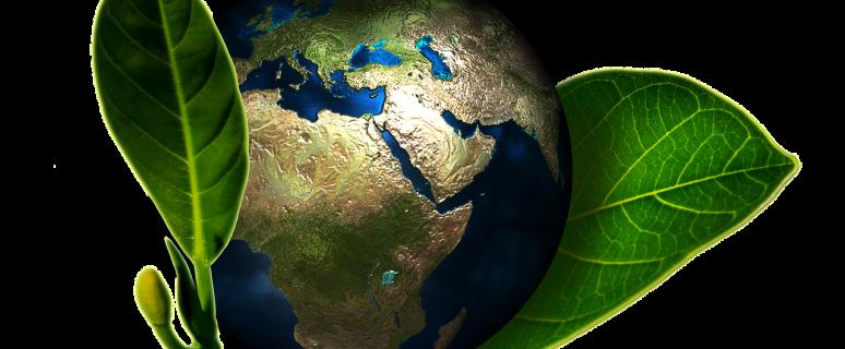 déchets liquides, déchets médicamenteux, développement durable, écologie, tri